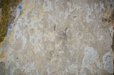 Background of a stained grungy gray cement wall with patches of green moss Stock Photo - 20200139