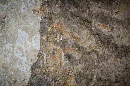 Background texture of a grungy cement wall with wet parts and mold patches Stock Photo - 20200138