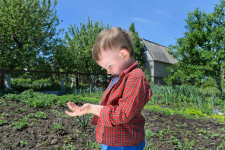 unafraid: Curious little boy playing with an insect watching it as it crawls on his arm while outdoors in the vegetable garden