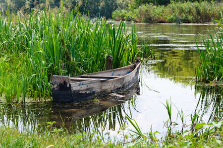 Old traditional wooden rowboat stranded on a beautiful lake on a sunny day photo