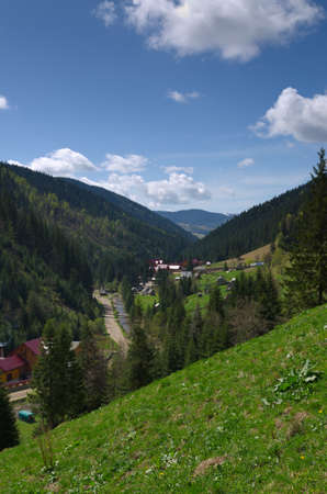 View from above of a scenic lush green alpine valley with scattered buildings nestled amongst forested slopes photo