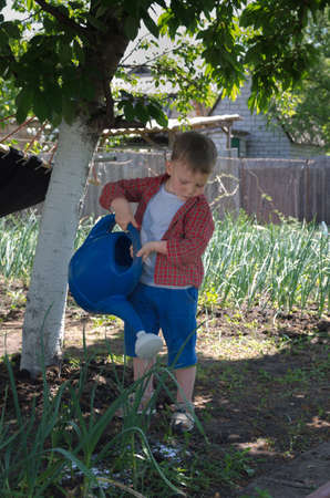 wetting: Cute little boy watering the garden standing in the shade of a tree watering vegetable plants with a blue plastic watering can
