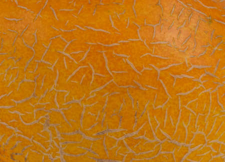 wrinkled rind: Macro background view of the surface and texture of a melon skin showing the pattern formed by the natural raised ridges on an orange sweet melon Stock Photo