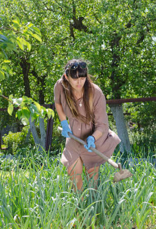 hoeing: Attractive women working in the vegetable garden hoeing the weeds amongst the plants as she strives to become self-sufficient in feeding her family Stock Photo
