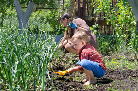 Cute little boy weeding the vegetable garden crouching down alongside his mother in the summer sunshine with his plastic spade