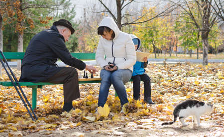 Family consisting of an elderly man, his daughter and her young son sitting on a wooden bench playing chess in the park during autumn with their cat strolling past in the foreground photo