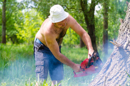 Shirtless man cutting down a tree trunk felling it with a portable petrol chainsaw in a cloud of sawdust in lush green woodland photo