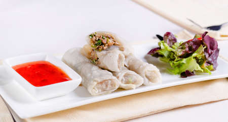 meaty: Close up Gourmet Healthy Meaty Spring Rolls with Fresh Veggies and Dip Sauce on White Rectangular Plate Stock Photo