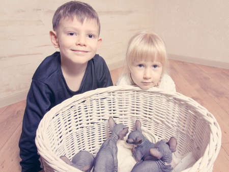 mesmerized: Young White Kids Smiling at the Camera Behind Sphynx Kittens in a Basket.