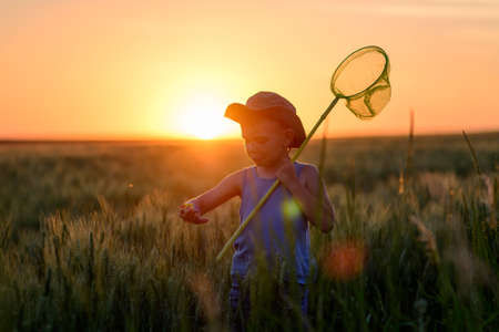 sunhat: Little boy catching insects at sunset silhouetted against the fiery orange sun in his sunhat holding his insect net