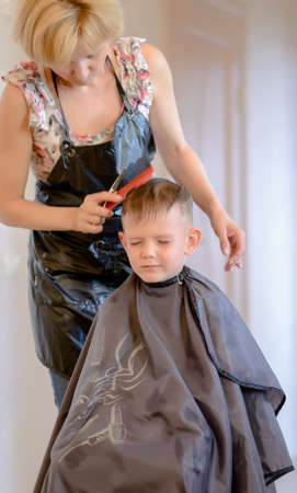 enveloped: Hairdresser cutting a little boys hair in her hair salon as he sits enveloped in a cape with his eyes closed