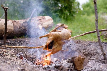 pollo rostizado: Pollo Asar en Make palanca de cambios Asador Durante Abrir Camp Fire en Wilderness Marco