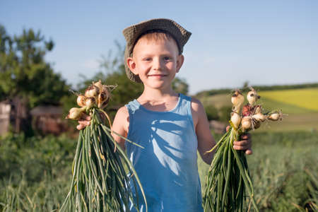 farm boys: Smiling little boy with bunches of freshly harvested onions that he has just picked from a field on a farm