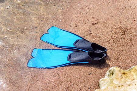 skin diving: Pair of blue rubber fins or flippers on the seashore lying alongside a rock at the edge of the ocean ready to go swimming or skin diving