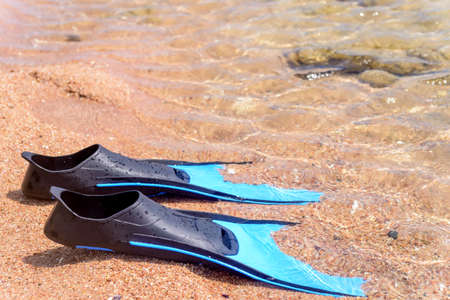 skin diving: Summer seaside fun with a pair of flippers lying ready for skin diving on a sandy tropical beach at the edge of the sea