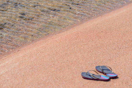 thongs: Pair of Flip Flop Thongs Resting Along Shoreline of Sandy Beach with Clear Water