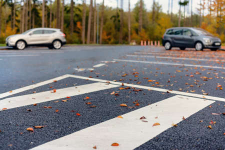 marked down: Dried brown and colorful red autumn or fall leaves lying scattered on the asphalt in a parking lot in a concept of seasons, low angle view along the curb Stock Photo