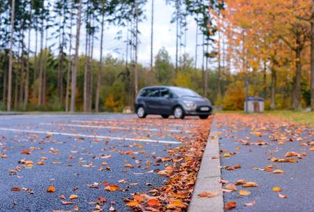 Gedroogde bruine en kleurrijke rode herfst of herfst bladeren liggen verspreid over het asfalt in een parkeerplaats in een concept van de seizoenen, lage hoek te bekijken langs de stoeprand