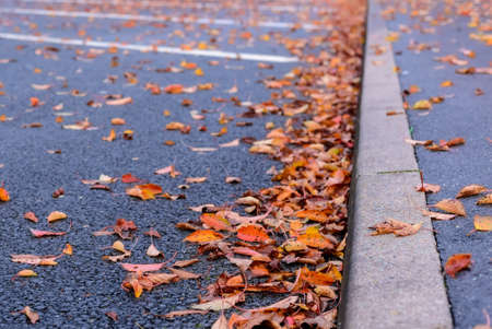 a lot  of: Dried brown and colorful red autumn or fall leaves lying scattered on the asphalt in a parking lot in a concept of seasons, low angle view along the curb Stock Photo