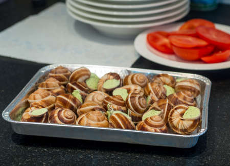 edible snail: Some snails on a plate with garlic sauce on the table against the background of chopped tomatoes