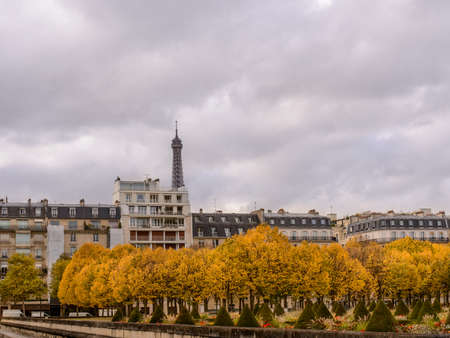 town homes: Autumn in Paris , town homes among yellow trees in the background Eiffel tower Stock Photo