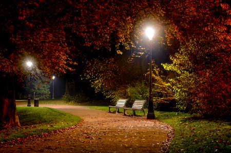 tranquility: Winding pathway through colorful autumn woodland with two wooden rustic benches illuminated at night by wrought iron street lamps in a tranquil scene Stock Photo