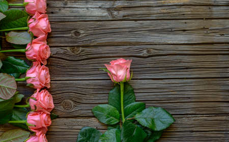 symbolic: Side border of beautiful fresh pink roses symbolic of love and romance on a rustic wood background for Valentines Day, Mothers Day, anniversary or wedding