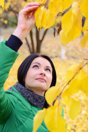 reaching up: Single young woman in green coat with serious expression reaching up into leaves of tree with large yellow leaves Stock Photo