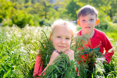 spontaneous expression: Young girl and boy playing in lush spring grass crouched down looking at the camera with focus to the pretty young blond girl in the foreground