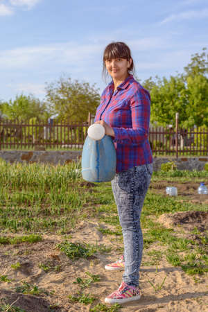 transplanted: Attractive woman watering transplanted seedlings in a vegetable garden using a blue plastic watering can Stock Photo
