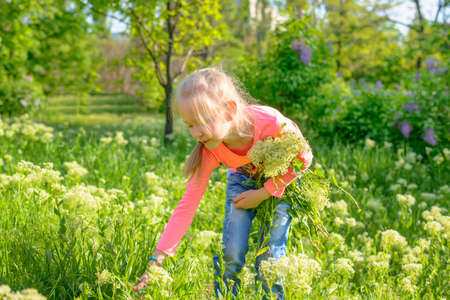 glum: Cute pretty little blond girl picking flowers in a lush green spring garden bending down to pluck a bloom to add to her bunch Stock Photo