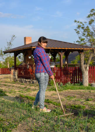 Woman working in her vegetable garden in evening light raking weeds between the rows of young vegetable seedlings