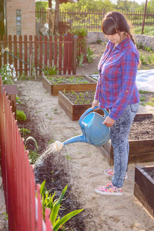 bordering: Attractive woman watering a flowerbed bordering a vegetable garden using a watering can, profile full length view