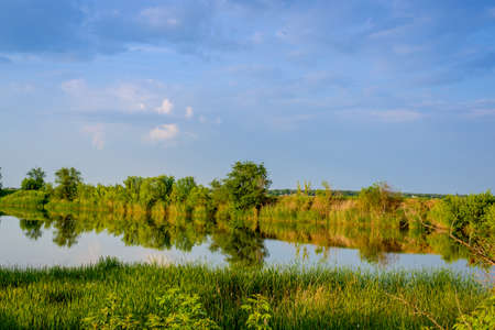 placid water: Tranquil rural lake surrounded by vegetation and trees in evening light with reflections on the surface of the calm still water Stock Photo