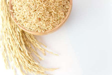 bruine rijst op de houten plaat en rijst plant met kopie ruimte op een witte achtergrond Stockfoto