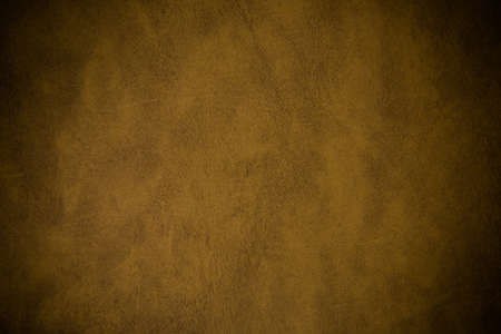 background texture: brown leather texture (may used as background) - Vintage filter effect