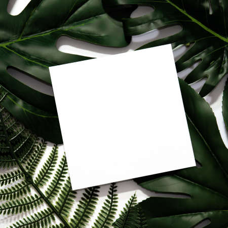 Creative layout made of tropical leaves with empty white paper frame. Flat lay. Eco nature concept. Minimal style.