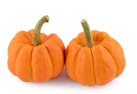 Orange miniature pumpkin  Stock Photo