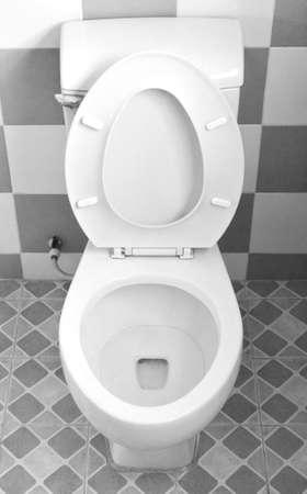 toilet sink: toilet