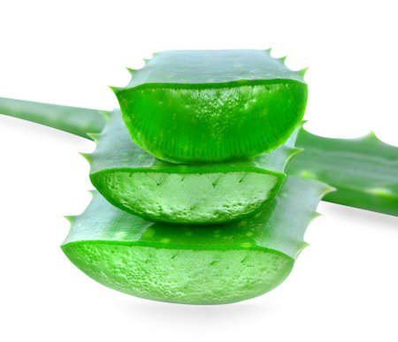 Aloe vera isolated on white background. photo