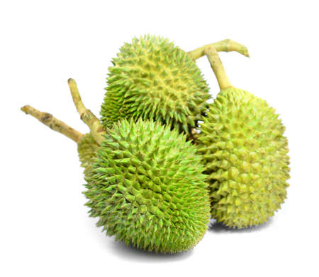 Durian King of fruit Thailand Stock Photo