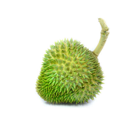 Durian King of fruit Thailand Lizenzfreie Bilder