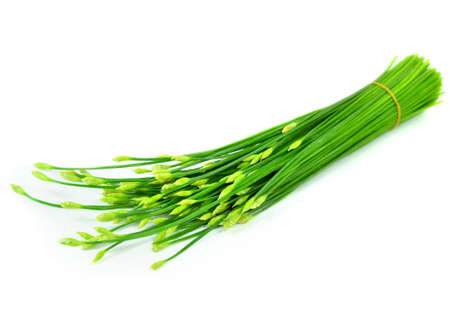 green onion (Chive), isolated on the white background