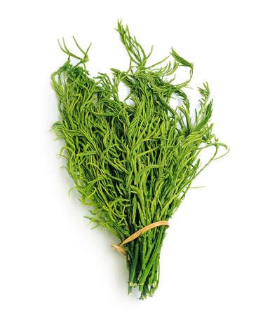 vibrat color: Thai Vegetables (cha-om)