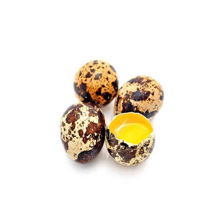 incubate: Quail egg isolated on white.