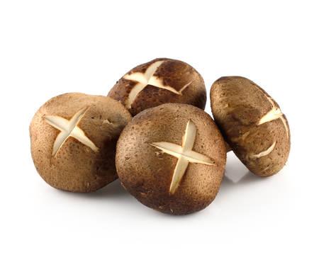 Shiitake-Pilze (Lentinula edodes). Lizenzfreie Bilder