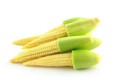 baby corn isolated on white background photo