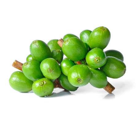 grano de cafe: Granos de café verde aisladas en blanco