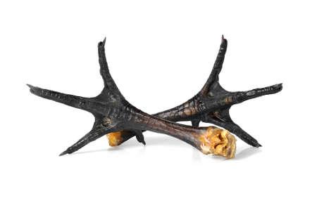 tenon: Chicken legs