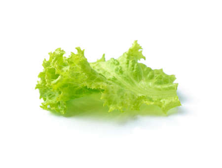 potherbs: Lettuce isolated on white background